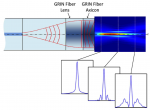 Accurate modeling and design of graded-index fiber probes for optical coherence tomography using the beam propagation method