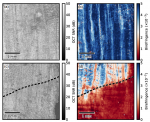 En face parametric imaging of tissue birefringence using polarization-sensitive optical coherence tomography
