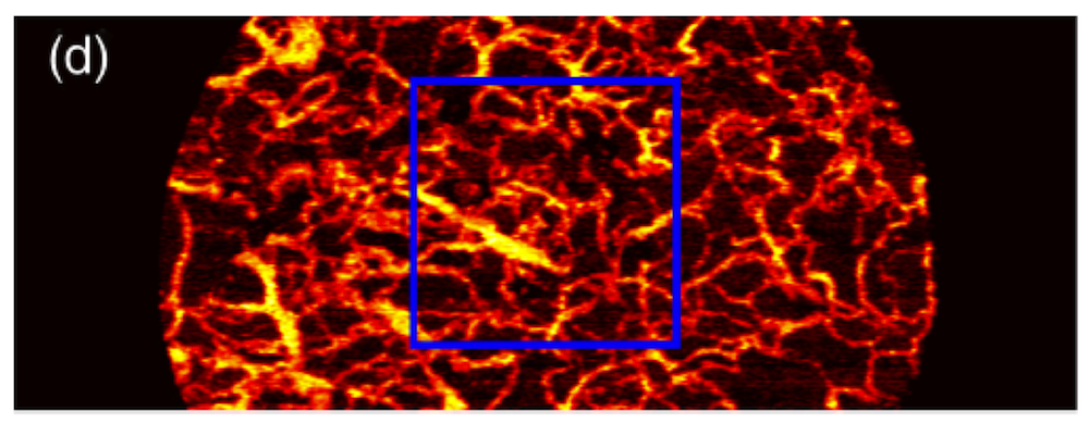 biophotonics research papers The stanford photonics research center builds strategic partnerships between the stanford university research community and companies employing optics and photonics.
