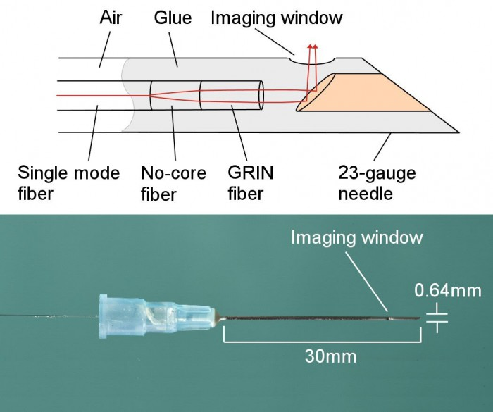 Fig. 1. Schematic of a needle probe. (bottom) Photo of a completed needle probe. The outer diameter of the needle is 640 micrometers.
