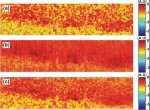 Speckle reduction in optical coherence tomography by strain compounding