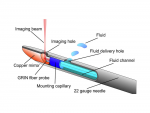 Optofluidic needle probe integrating targeted delivery of fluid with optical coherence tomography imaging