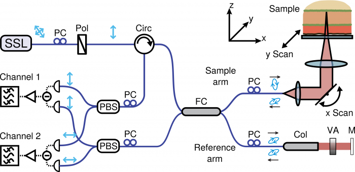 Schematic of a simple fibre-based PS-OCT system used in our group (PSOCT-1300, Thorlabs, New Jersey). SSL swept-source laser; PC polarisation controller; Pol polariser; Circ circulator; FC fibre-coupler; Col collimator; VA variable attenuator; M mirror; PBS polarising beam splitter.