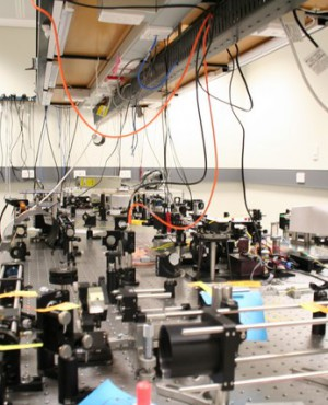 Free-scape Optical Coherence Microscopy system